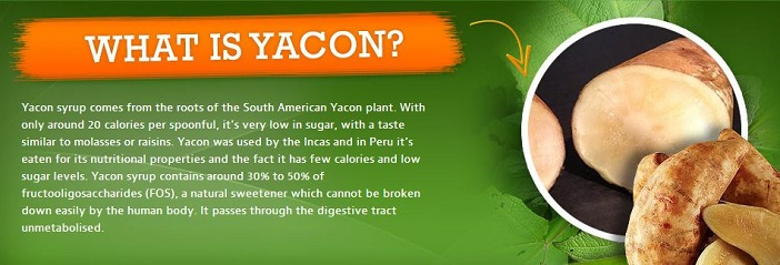 What is Yacon Syrup