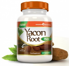 Yacon Root Pure