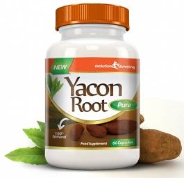 Yacon Root Pure