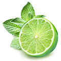 lime-leaf